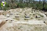 کاخ بردک سیاه دشتستان